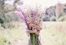 Flower Love ♥