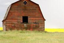 Farm House and Barns