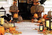 Halloween/Thanksgiving/Fall / by Tarah Garvin