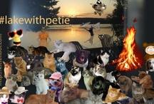 My Photoshop/GIMP / http://www.pinterest.com/kittehboi/dfgsdfsgv/