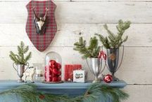 Holiday Decorating Ideas / Spruce up your holiday home with festive DIY projects, products we love, and more from Country Living and PopSugar Home.  / by Country Living Magazine