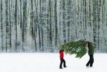 merry holidays I inspiration / celebratory moments.