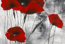Poppies /  Flandres field
