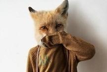 Fantastic Mr. Fox / by Halla Kisi