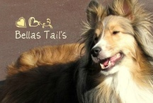 Bella's Tails / Dogs