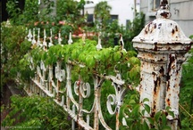 Garden • Patio • Courtyard / Secret Garden~ Fairy twinkle lights, candles, magical spaces.  Greenhouses, Boho ~ Bohemian style goodness, beautiful patios, old iron fences, iron gates... / by Virginia Mott