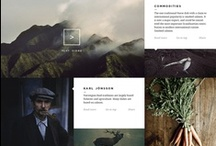 interface / website / app