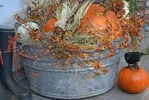 Decotating for Fall! / by Karen's Treasures