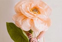 flower ideas / by Robyn Clark