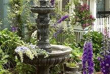 garden / by Marcia Perez