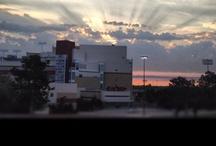 Mornings at Remington Park
