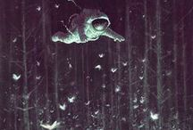 Illustrations / by Marcus Pecchenino Jr