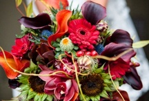 Wedding Bouquets / Flowers, Bouquets and More!