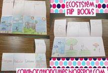 Fifth Grade - Science