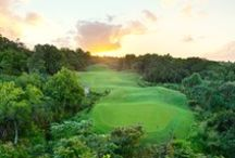 Prince Course / Designed by Robert Trent Jones, Jr. who brilliantly integrated the wild beauty of the north shore of Kauai. Taking advantage of wilderness areas, natural water features and the dramatic coastline, the course wind their way through magnificent stands of trees and rolling landscape and always, views that will astonish you with their unforgettable beauty. Visit: www.princeville.com  / by Princeville Resort