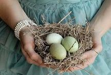 Vintage and  Easter / by Teresa Piccinini
