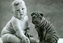 Babies, babies, babies / by Jaime Macaluso