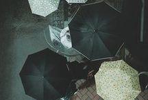 rain is falling / by lydia austin