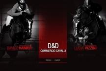 D&D CAVALLI / La D&D Cavalli è una società che si occupa di compravendita di cavalli per il salto ostacoli.  I cavalli gestiti dalla D&D Cavalli provengono dai migliori allevamenti europei (Olanda, Belgio, Ungheria, Polonia) e vengono selezionati per offrire ai clienti cavalli equilibrati, divertenti e performanti nelle varie categorie di salto ostacoli. Il sito internet realizzato per D&D Cavalli mostra tutti i cavalli in vendita, quelli venduti e quelli utilizzati per le gare. www.ddcavalli.it.