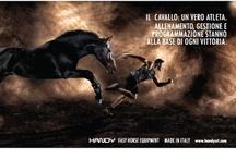 HANDY Srl / Handy rappresenta il riferimento in Europa per la  realizzazione di strutture per il mondo del cavallo di semplice gestione, di qualità e interamente made in Italy. La gamma di prodotti comprende recinti, giostre, tondini, carrelli, tapis roulant e altri accessori e macchinari. / by Vittoria Smania
