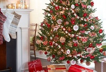 Christmas / Christmas decorations, crafts, recipes and party inspiration.