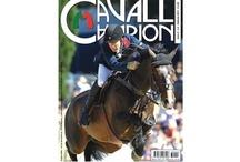 CAVALLI CAMPIONI / La nuova rivista di equitazione diretta da Alessandro Pellegrini: sport, allevamento, benessere, rispetto. Dai pony ai campioni olimpionici.