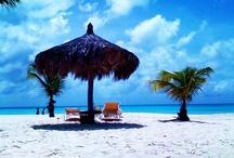 On Retreat: Aruba