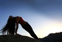 Travel Yogi: Liz Arch