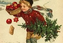 Searching for the perfect Christmas Tree! / by A Shabby Chic Life