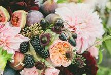 FLOWERS D A R L I N G ✾ / #flowers #plants #green #garden
