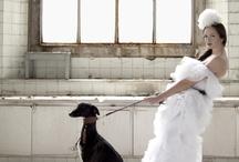 "Brides / Fotógrafo: Pedro Reguera  Modelo: Malú Sánchez  Estilista: Cristina Pérez ""atelier 15""  Ayudante: Vigilio García  Maquillaje: Aida Carballo  Mascota: Cesar Eduardo  Vestido de Amaya Arzuaga"