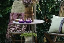 Backyard / by Viola Stuckey