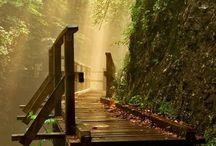 Hikes to do / Hike trails