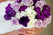 Wedding...someday / by Laureen Vermillion
