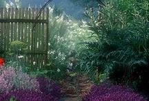 Ingleside Gardening / by Denise Bruce of Ingleside
