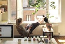 Home Office / Great design for home offices