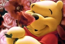 Pooh, My Number One