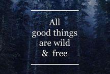 Quotes / by Maryanna Baldridge