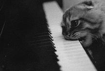 Mmmmmusic / by Whitney Gans