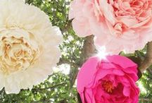 Blooming Florals Wedding Ideas / There's something whimsical and enchanting about the wide spectrum of colors in blooming florals. And when these stunning elements are included in a garden wedding, the result is pure beauty.