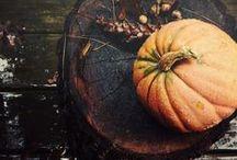 Halloween | Samhain