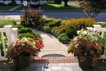 Get this look! Spring-planted Curb Appeal inspiration from American Meadows / Canna Lilies, Caladium, and Begonias are perfect for spring planting, which means that you can get a head start on that much-needed curb appeal makeover! Choose these striking and cheerful combos for lining walkways and paths, or add in some easy-growing zinnias and marigolds to fill in your front and side yard beds.
