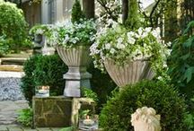 flowers, gardens and great outdoor spaces