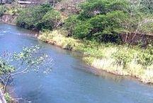 My River Choice / by Ramabhadran Sreedharan