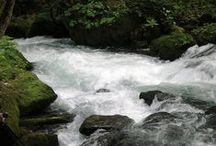 Lakes & Streams Choice / Beautiful Lakes and Streams / by Ramabhadran Sreedharan