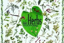 apothecary / all things herbal