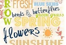 spring / A time of awakening