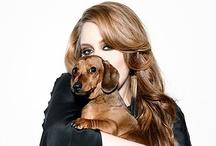 Celebrity's Pets