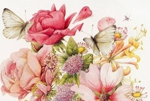 botanical prints / A garden because of imagination and talent.