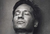 David Duchovny / It all started with the X Files